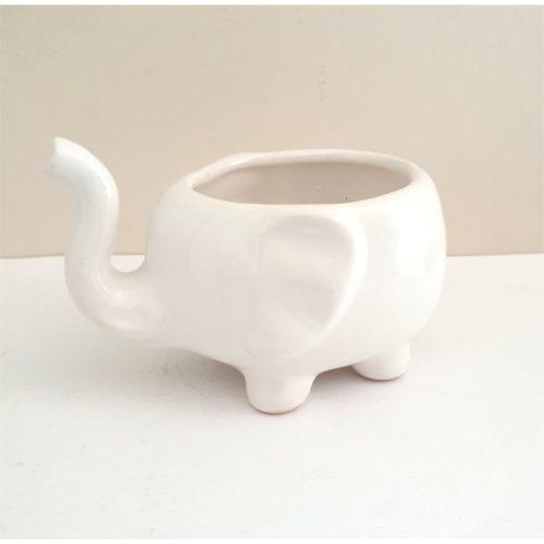 Maceta Elefante blanco GP Diseño